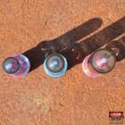PETling S, verschiedene Farben, belasert, inklusive gratis FTF-Stecklingen, 3er Set